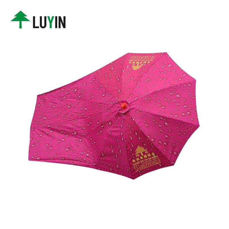 Luyin Array image3