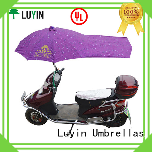 Luyin New canopy for bike Supply for windproof